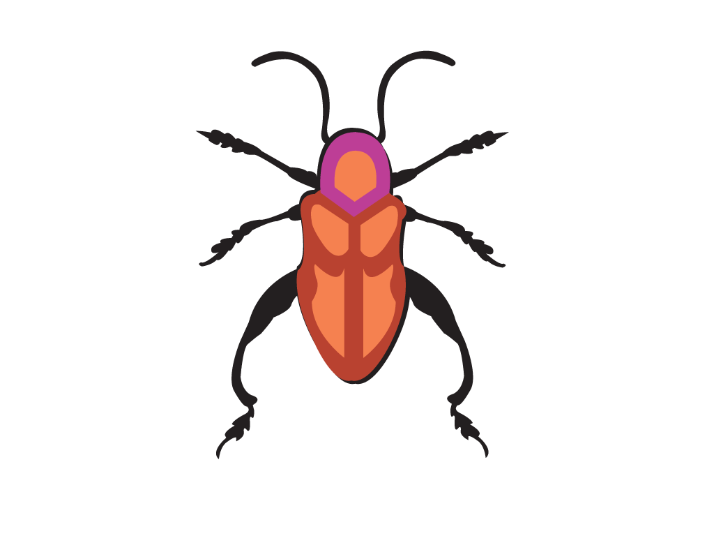 Beetle PNG, Vector, PSD, Clipart with Transparent Background Photo for Free Download