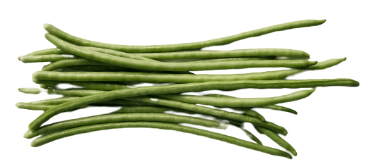 Green Long Beans Vegetable png Picture